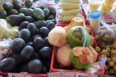 Avocados & Coconuts