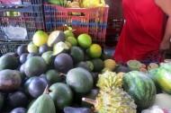 Mangos & melons
