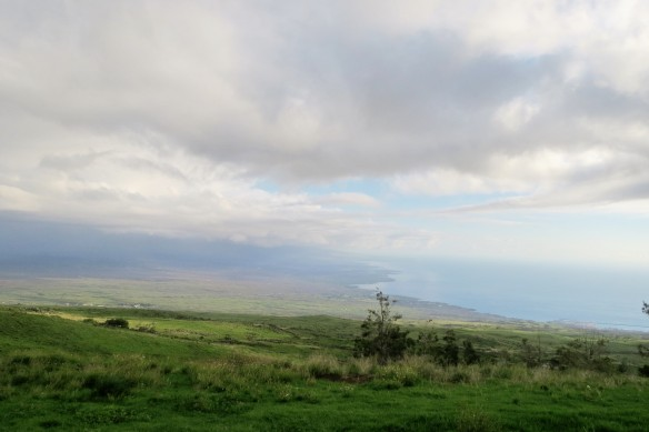 On Highway 200 towards Mauna Kea